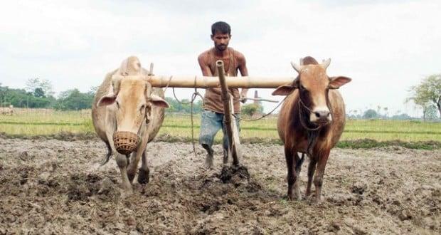 शेतकरी कर्ज माफी महाराष्ट्र २०१७